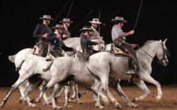 equus Girona